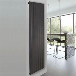 Radiateur Electrique 1000w : radiateur lectrique acova fassane premium vertical ~ Melissatoandfro.com Idées de Décoration