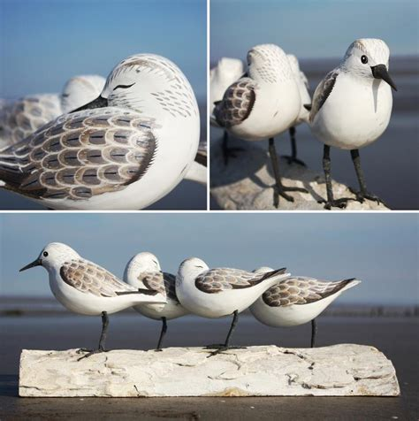 sanderling bird carving hand carved birds wooden bird
