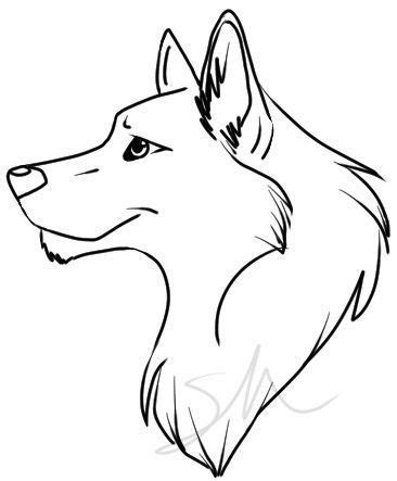 Best How To Draw A Wolf Ideas And Images On Bing Find What You