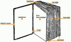 Book Anatomy  Parts Of A Book   U0026 Definitions