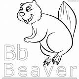 Beaver Coloring Pages Print Chakiradecor sketch template