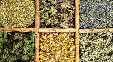 les herbes aromatiques en cuisine cuisine comment faire sécher les herbes aromatiques