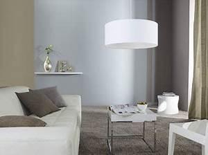 Coussin Gris Et Blanc : salon couleur taupe et gris rideaux coussin et tapis taupe ~ Melissatoandfro.com Idées de Décoration
