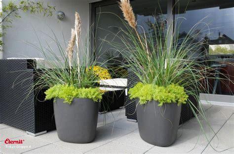 pflanzengefaesse bauwelt puempel vorarlberg