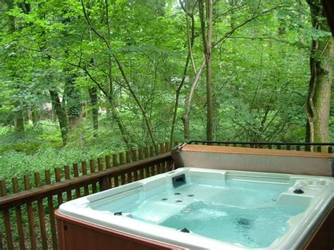 Holidays With Tubs - tub and view picture of forest holidays forest of