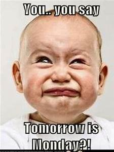 You You Say Tom... Tomorrow Funny Quotes