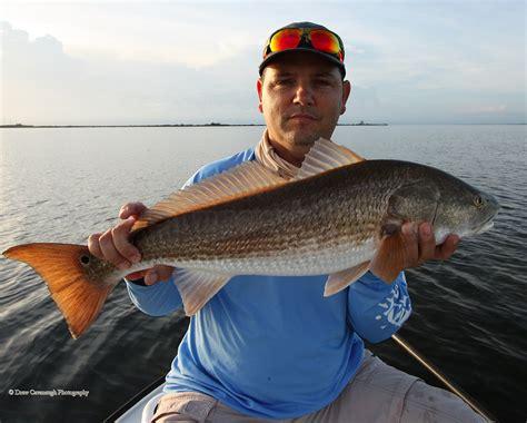 redfish tackle florida light fishing drum saltwater flats mosquito lagoon