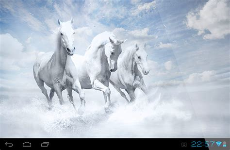 horse wallpaper gallery