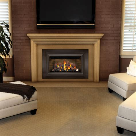 propane fireplace insert fyre place heating products 187 fireplace inserts