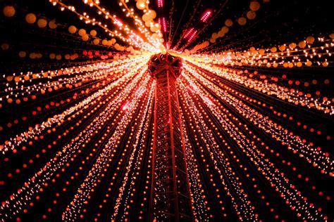 the fibre optic christmas tree phillip wong
