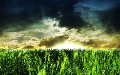 Abstract wallpaper - green field and big sun. Abstract ...