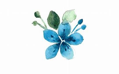 Watercolor Flower Watercolour Resolution Transparent Thehungryjpeg Single