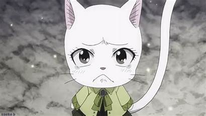 Fairy Tail Carla Anime Exceed Crying Gifs
