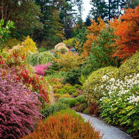 Herbst Garten by Best 25 Autumn Garden Ideas On Autumn Garden