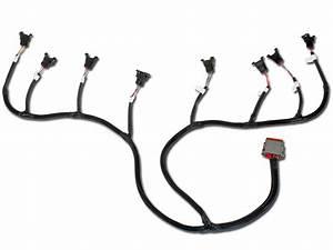 Aem- Infinity Universal V8 Core Wiring Harness - Core