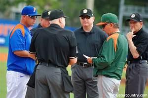 Florida Gators vs Miami Hurricanes weekend preview