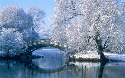 Photography Winter Hd Wallpaper Background Image 1920x1200