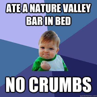 Nature Memes - ate a nature valley bar in bed no crumbs success kid quickmeme