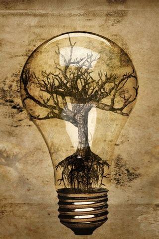 abstract lightbulb tree roots michael hagedorn