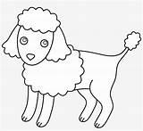 Clipart Poodle Coloring Miniature Puppy Poodles Pngkit sketch template