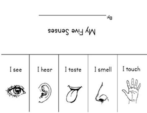 my five senses flipbook by richardson tpt 119 | original 321529 1