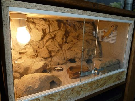 m gecko fabriquer un terrarium en osb