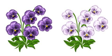 purple and white violets png clipart gallery