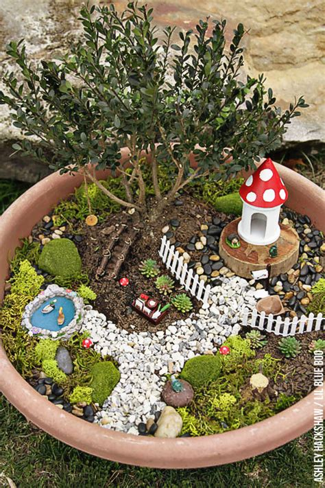 fairy garden ideas     bonsai tree fairy garden