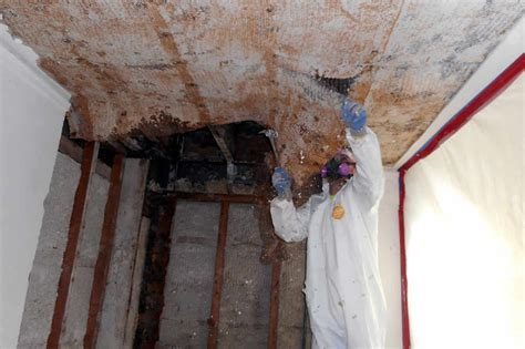 asbestos abatement  general services