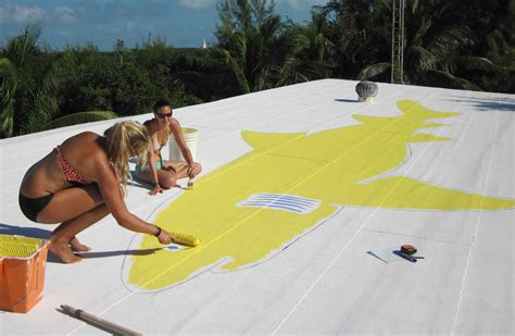 Painting On A Cool Roof