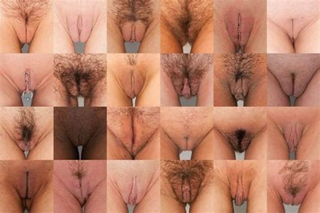 #The #7 #Different #Kinds #Of #Pussy #Lips