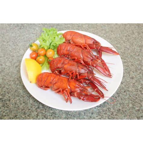 cuisiner un homard vivant l 39 écrevisse comment la choisir comment la cuisiner