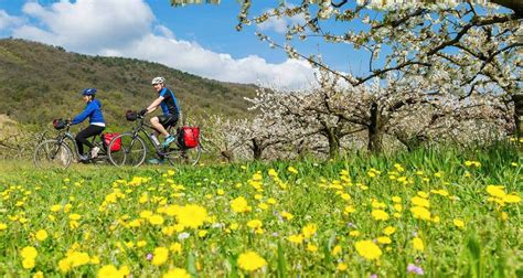 Rhone Cycle Path: Lyon to Provence by UTracks (Code: RLP ...