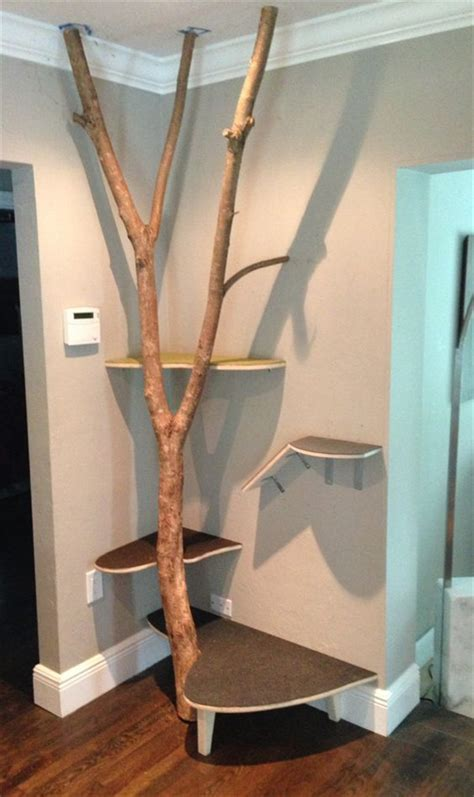 popular cat tree ideas   love fallinpets
