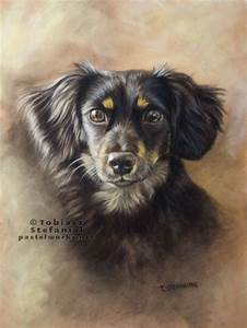 Pencil Drawings Love Black Dog Portrait Dog Portraits Animal Photography