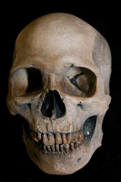 Diy Halloween Tombstones by Props For Rent Amp Portfolio Realistic Human Skull Props