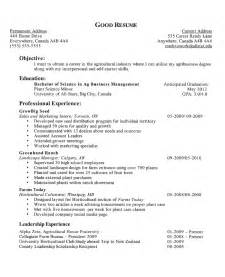 good resume experience examples resume example good sample picture for student examples first with work experience - Examples Of Good Resumes For College Students