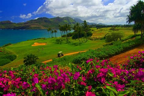 hawaii tourism bureau kosova travel hawaii travel guide