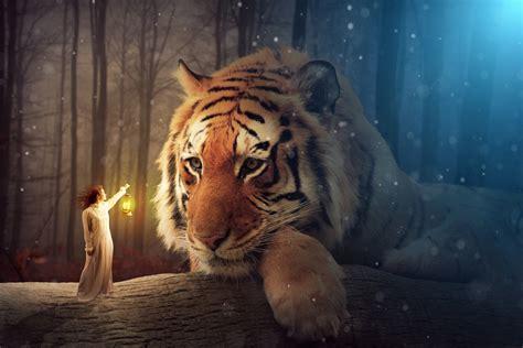 Permalink to Wallpapers Hd Fantasy Tiger