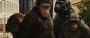RISE OF THE PLANET OF THE APES Review | Collider