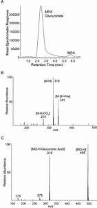Total Ion Chromatogram Of Mpag  A   And Mass Spectra For
