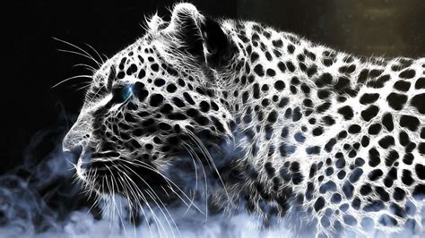 Hd Animal Wallpapers For Mac - wallpapers leopard wallpaper cave