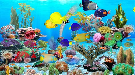 Aquarium Wallpaper Animated Free - free fish tank desktop background animated background