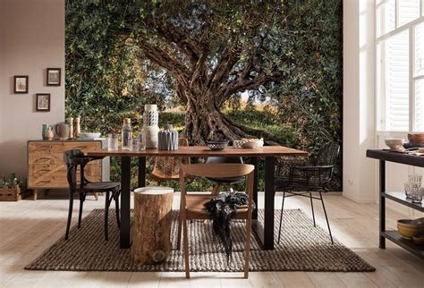 olive tree national geographic wall mural wallpaper