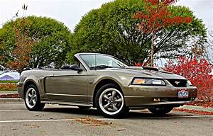 Mineral Gray 2001 Ford Mustang GT Convertible - MustangAttitude.com Photo Detail