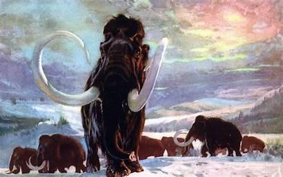 Prehistoric Background Wallpapersafari Mammoth Burian Zdenek