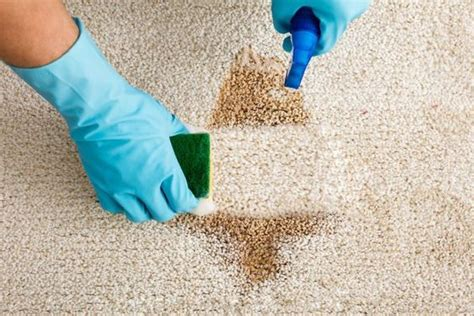 pulire tappeti in casa come pulire i tappeti pulizia casa professional carpet