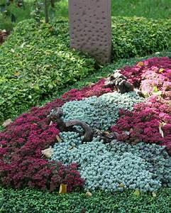 Was Blüht Im Schatten : trauergrab mit sedum mehrj hrigen pflanzen im herbst stockbild bild von errichten herbst ~ Markanthonyermac.com Haus und Dekorationen