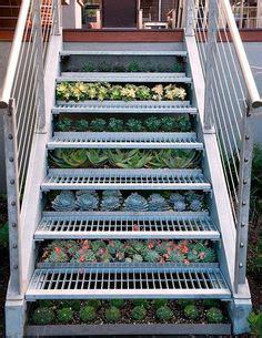 vertical herb garden design garden ideas pinterest