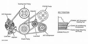 1997 Isuzu Rodeo Serpentine Belt Routing And Timing Belt